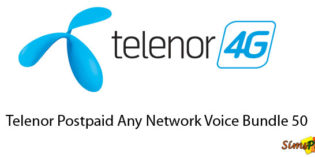 Telenor Postpaid Any Network Voice Bundles