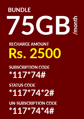 Jazz 75 GB Monthly Package