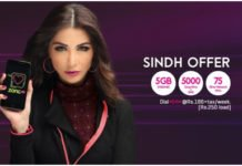 Zong Sindh Package